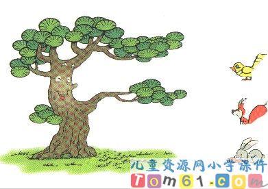 数学知识树图片