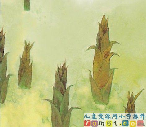 笋的简笔画图片
