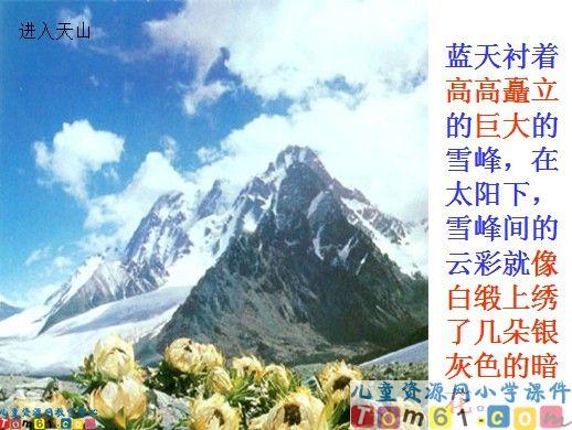 七月的天山课件2