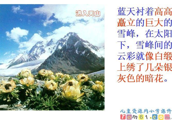 七月的天山课件3