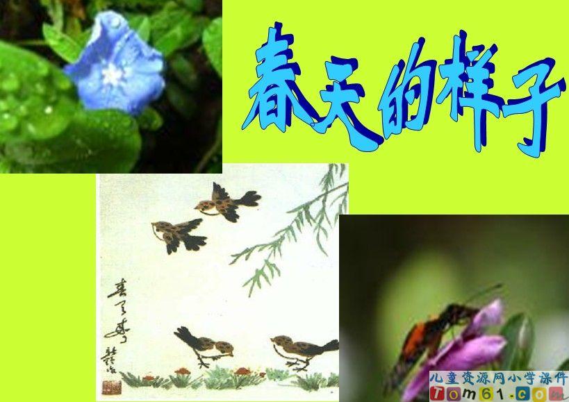 触摸春天课件9-人教版小学语文四年级下册课件-中国