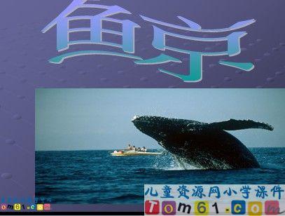 鲸小学_鲸文库百度课件课件译林英语教案下载图片