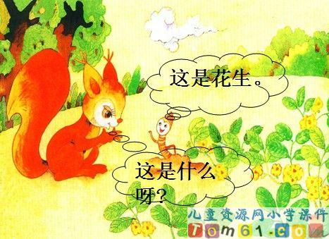 小松鼠找花生课件14_人教版小学语文一年级上册课件