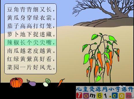 中国儿童资源网; 菜园里