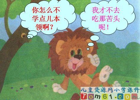 两只小狮子课件5
