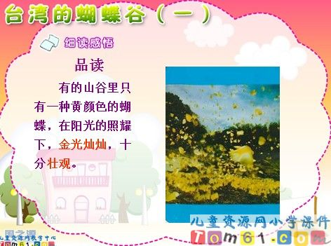 台湾的蝴蝶谷课件5