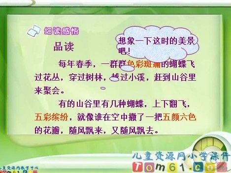 台湾的蝴蝶谷课件3