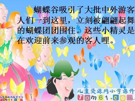 台湾的蝴蝶谷课件13