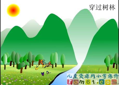 台湾的蝴蝶谷课件14
