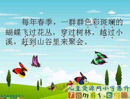 台湾的蝴蝶谷课件19