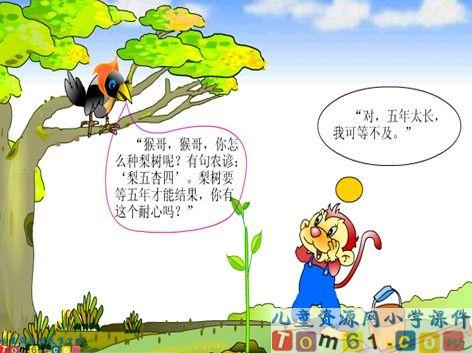 ppt素材 果树