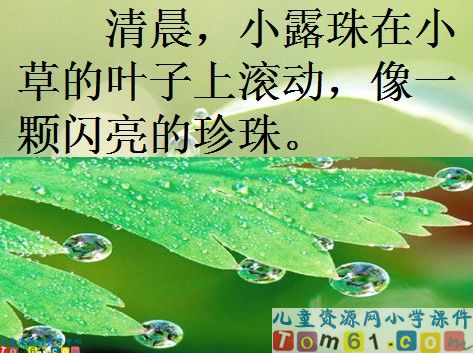 小 露珠 的梦课件8 苏教版小学语文 三年级 上册课 高清图片