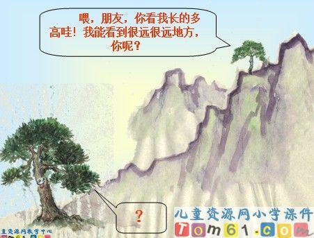 小松树和大松树 课件1