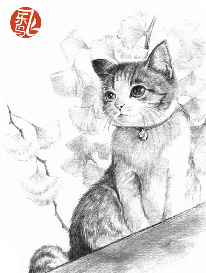 小猫-素描图集