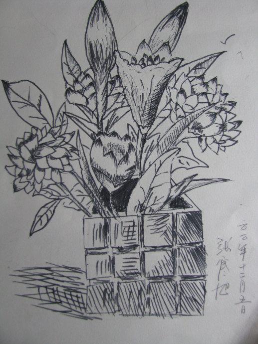 植物-素描图集
