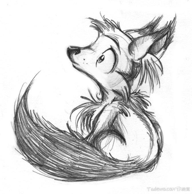可爱的狐狸铅笔画