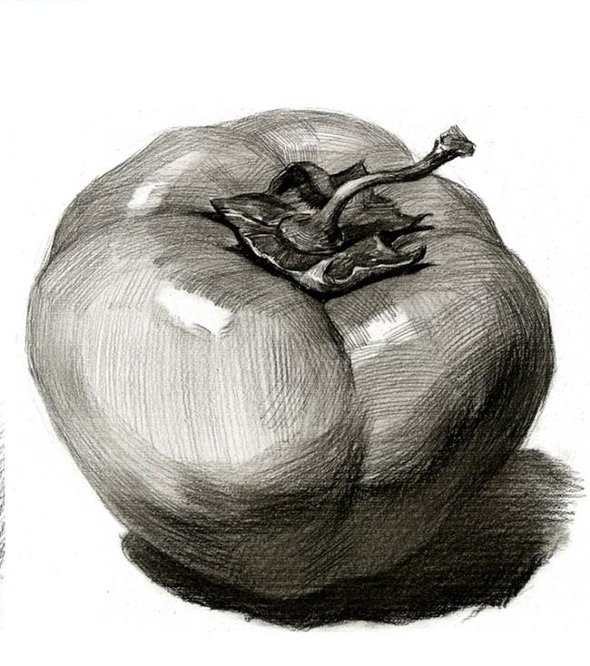 水果蔬菜素描结构
