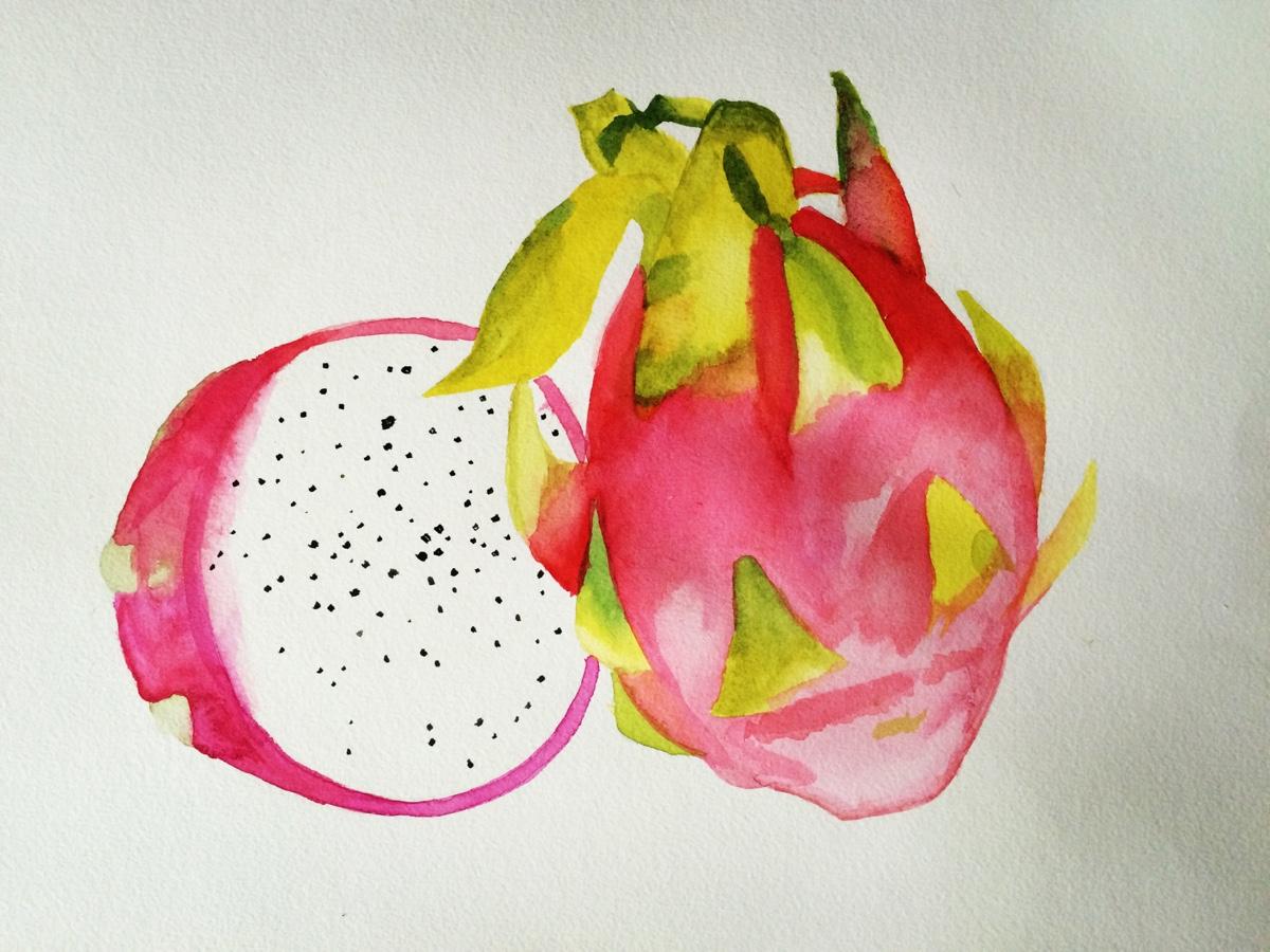 水果-水彩画图集