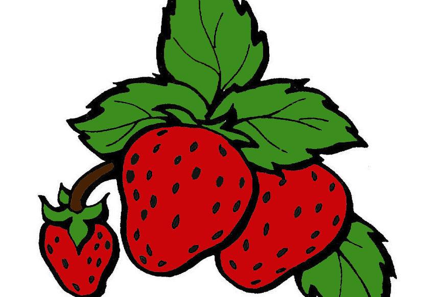 草莓-水彩画图集