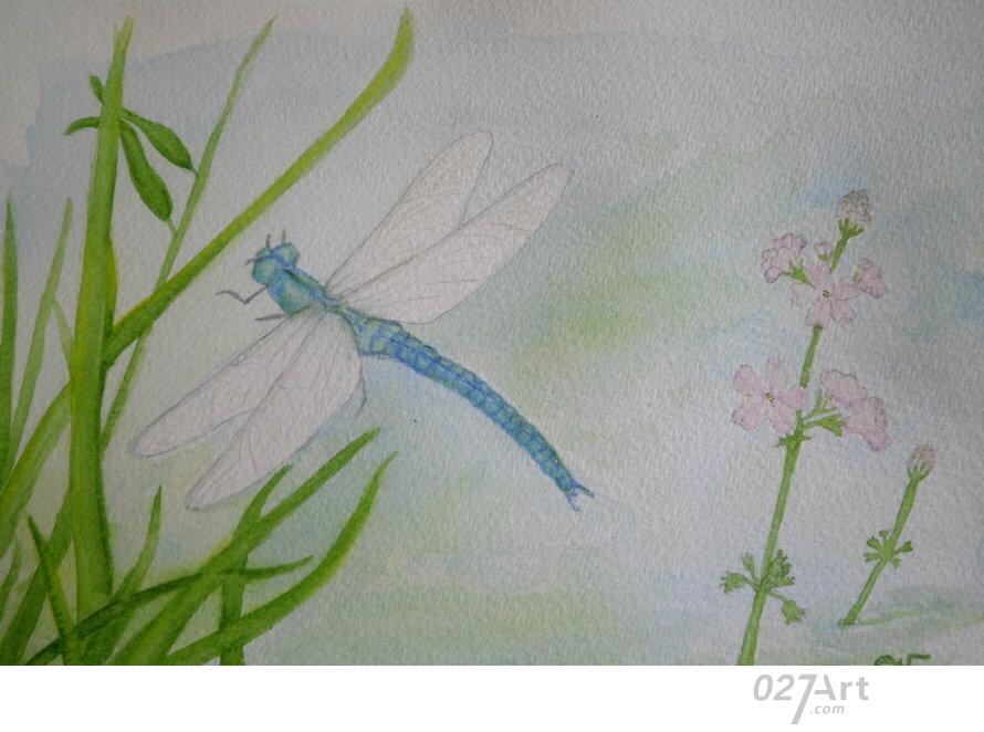 蜻蜓-水彩画图集